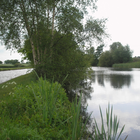Canal Pit